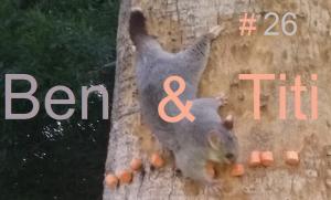 Ben Et Titi #E26 HD
